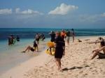 De beste manier om deze koralen te bewonderen is door erboven te snorkelen. Opgelet van de rug want de zon brandt ongenadig !
