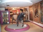 Het stierenvechtersmuseum Taurino met originele kostuums, zwaarden en een grote collectie kleurrijke posters over lokale stierengevechten.