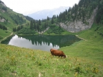 Het meer van Arvoin is gelegen op 1687 m en is omringd door verschillende bergen waaronder Pointe d'Arvouin (2019 m) en Le Linleu (2093 m).