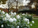 De Grosser Garten is de groene long van Dresden. Deze 2 km² grote tuin (1675) werd aangelegd met het Franse Versailles als voorbeeld. Later is de tuin deels aangepast aan de minder geometrische Engelse stijl. In het midden ligt een paleis waar nu wisselende tentoonstellingen zijn.