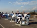 Het Michelangelo plein ligt op een heuvel en biedt een goed uitzicht op de door de rivier de Arno in tweeën gedeelde stad.