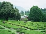 Op de Duitse oorlogsbegraafplaats Costermano rusten 21.951 Duitse soldaten, gesneuveld in de Tweede Wereldoorlog. Hun graven zijn vanuit geheel Noord-Italië naar deze begraafplaats overgebracht.