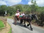 De paardenkoetsen met toeristen die de Black Valley en de Ring van Kerry op een relaxe manier verkennen, in tegenstelling tot ons arme fietsers.