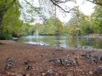 In de zomer is de Volksgarten een oase van rust waar men graag gaat barbecuen, frisbeeën, wandelen of gewoon op het gras luieren.