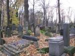 Joods kerkhof : 65000 Joden uit Krakow en omgeving stierven tijdens WO II
