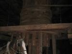 Paarden deden het zware werk in de zoutmijnen van Wieliczka