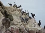 Boottocht naar de Ballestaseilanden
