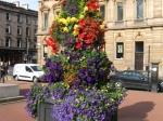 Bloemenpracht op George Square (Glasgow)