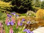 We bezoeken het Armadale Kasteel, Museum en de mooie tuinen op het eiland Skye