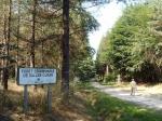 Forêt de la Grave tijdens de wandeling Circuit des Escarits.