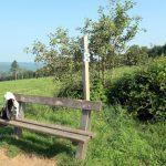 Vanaf dit zitbankje even buiten Marcourt heb je een uitstekend zicht op de plateaudorpjes rondom