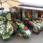 Buiten aan de voormalige zeppelin hangaars van de centrale markt worden naast groenten en fruit ook mooie bloemen en bloemstukken te koop aangeboden.