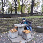 Bernard zonder schaakpartner en schaakstukken in de tuin van Wöhrmann. Het weer zal er wel voor iets tussenzitten.