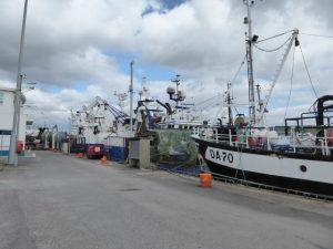 Castletownbere is de 2de belangrijkste vissershaven van Ierland en exporteert vis doorheen Europa.