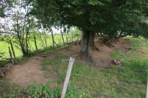 Even buiten Holzheim zien we de restanten van een Romeinse vestingswal waar nog opgravingen aan de gang zijn.