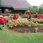 De Doi Tung Koninklijke Villa van de prinses-moeder (van wijlen koning Bhumibol) heeft prachtige tuinen.
