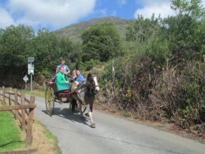 Overal kom je deze paardenkoetsen met toeristen tegen die deze prachtige streek op een makkelijker manier dan wij verkennen.