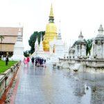 De Wat Suan Dok koninklijke tempel met een relikwie van Boeddha en ernaast de witte chedi's met de asse van de koninklijke familie van Chiang Mai.