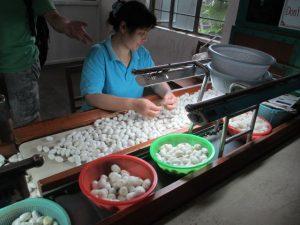 Zijdemuseum (Suzhou)